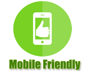 mobile friendly icon